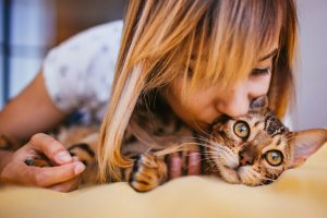 5 Reasons To Hire A Cat Sitter